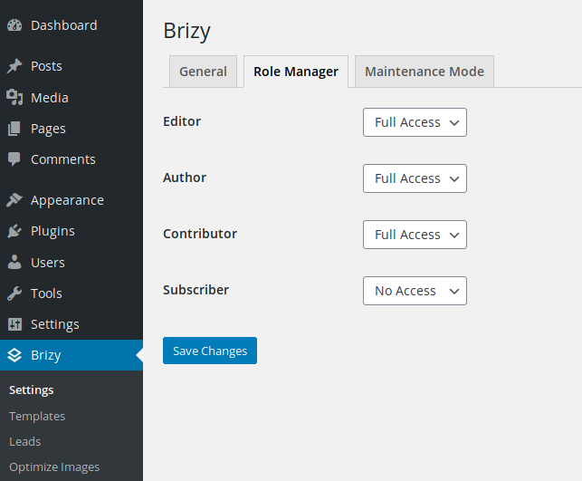 Brizy Page Builder Plugin