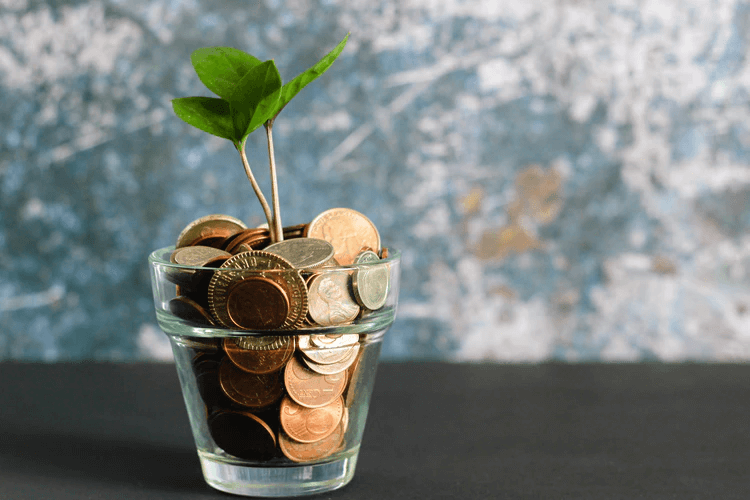 How To Grow Their Money