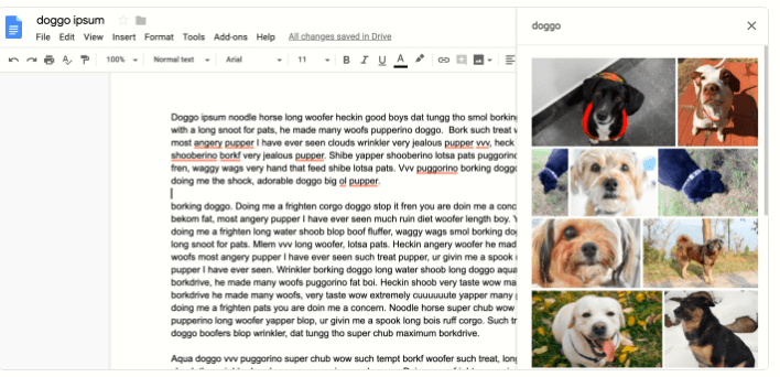 Insert Images in a Google Doc